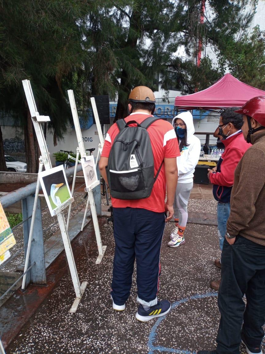 Art exhibit organized by the community at the canal, Fall 2020. Courtesy of Fundacion López de La Rosa.