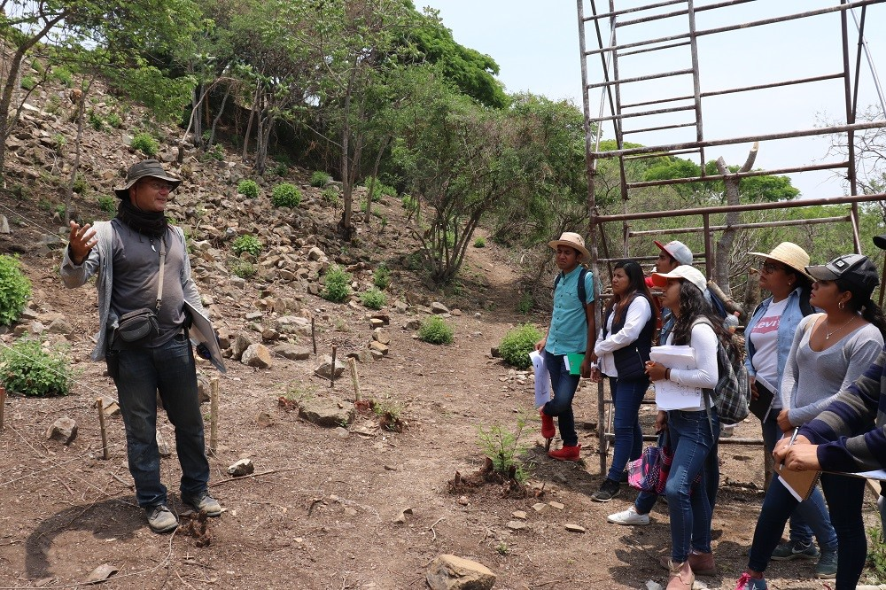 A discussion of the earthquake damage to Monte Albán's Building P.