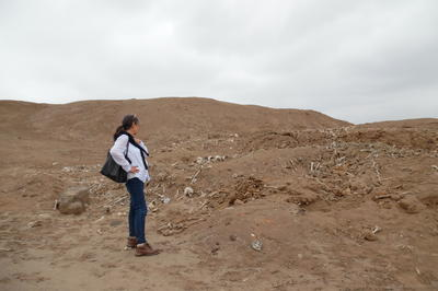 Martha Zegarra, Executive Director of WMF Peru, looks upon the looted areas of Cerro de Oro.