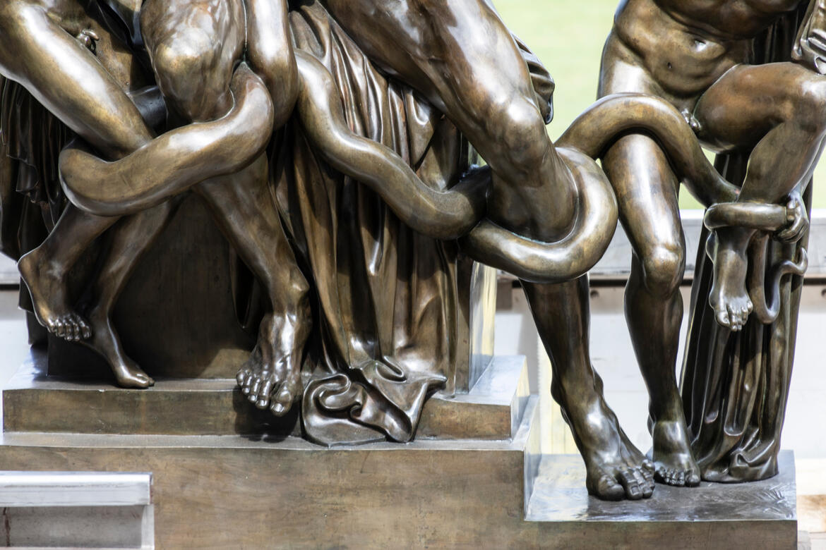 Detail of the Laocoön. Photo by Andy Marshall.