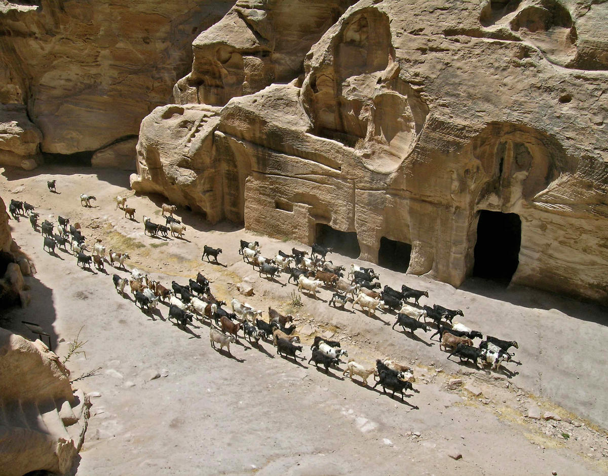 Petra Archaeological Site World Monuments Fund - Archaeological sites in the southwest us map