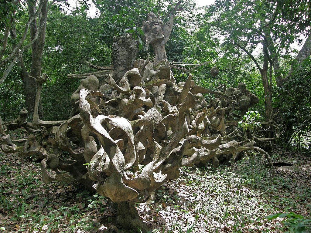 Image result for Osun Osogbo Sacred Grove