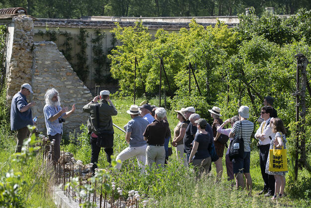 Attendees enjoying Watch Day at the Potager du Roi, 2019