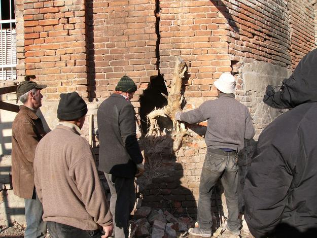 Removal of invading root from wall crack, 2005
