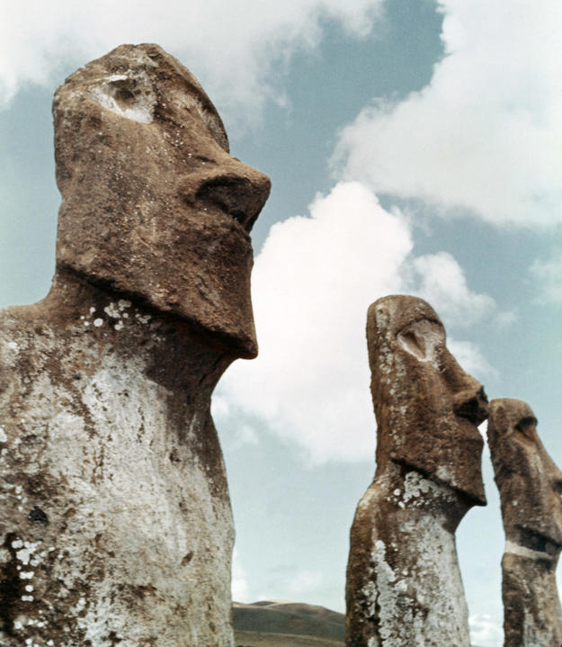 Three of seven moai grouped together at Ahu Akivi, after conservation , 1966