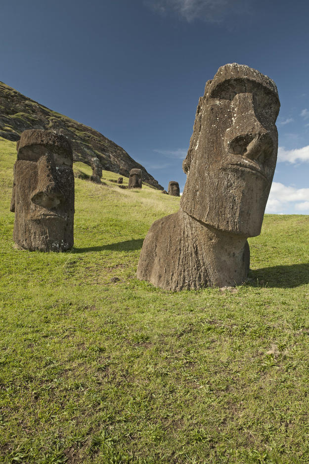 Moai at Rano Raraku, 2011