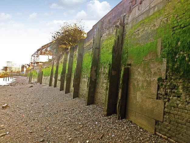 Deptford Dockyard and Sayes Court Garden