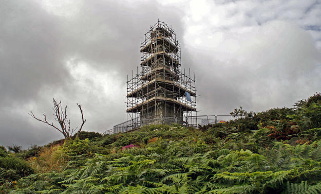 Scaffolding during conservation, 2014