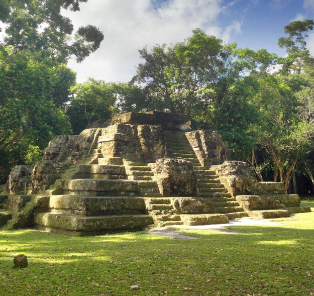 A sun-dappled pyramid, 2014
