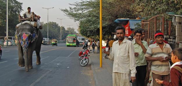 Bus lane in front of Purana Qila, 2009