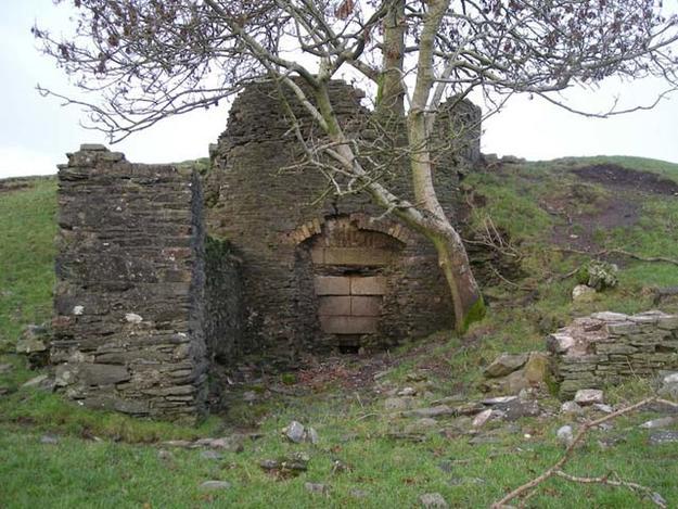 C. eighteenth-century lime-kiln in the demesne, January 2009