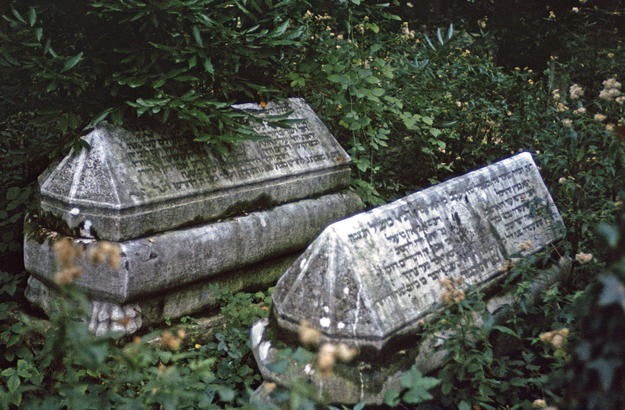 Gravemarkers amid excess vegetation, 1975