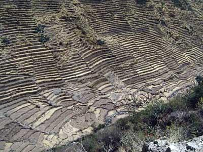 Laraos Terraces