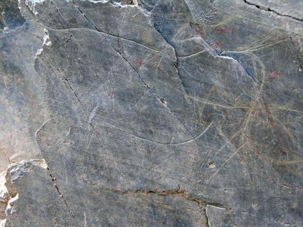 Côa Valley Petroglyphs