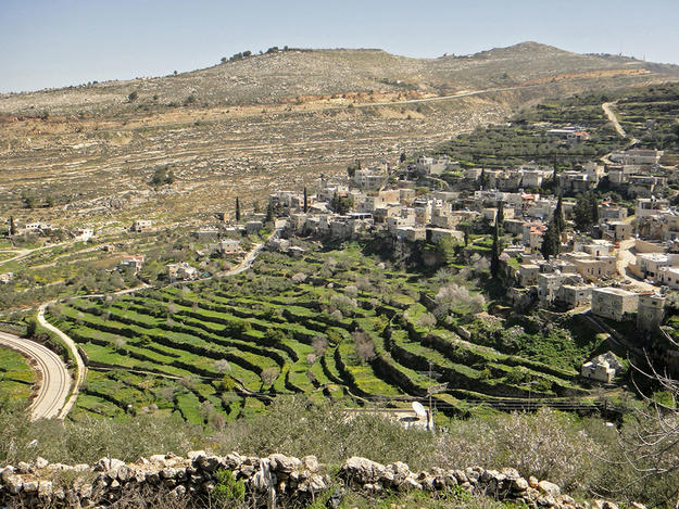 Ancient Irrigated Terraces of Battir