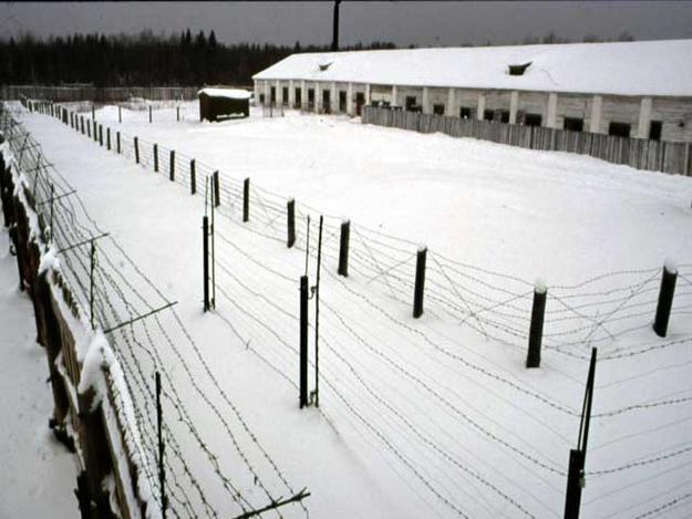 Perm-36