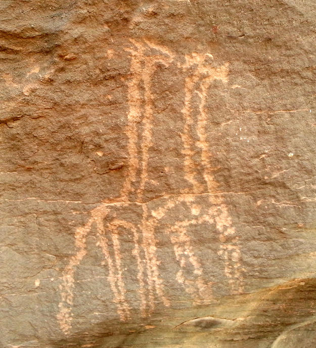 The surviving rock art includes many depictions of animals, 2015