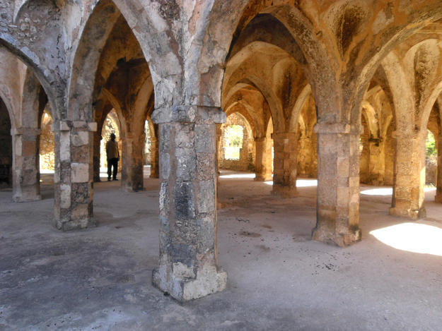 Arches of the Great Mosque, 2009