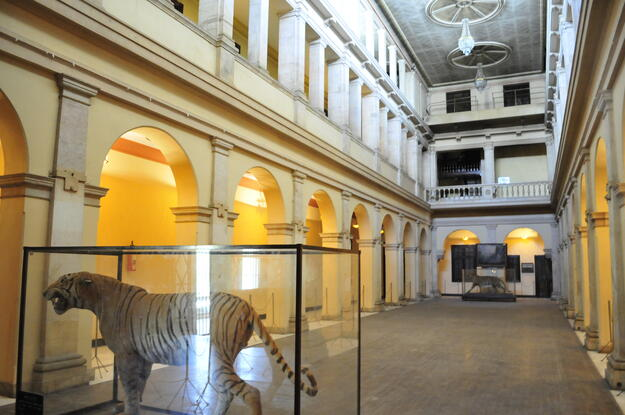 Lal Bagh Palace interior, 2019