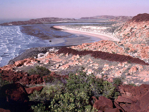 DAMPIER ROCK ART COMPLEX