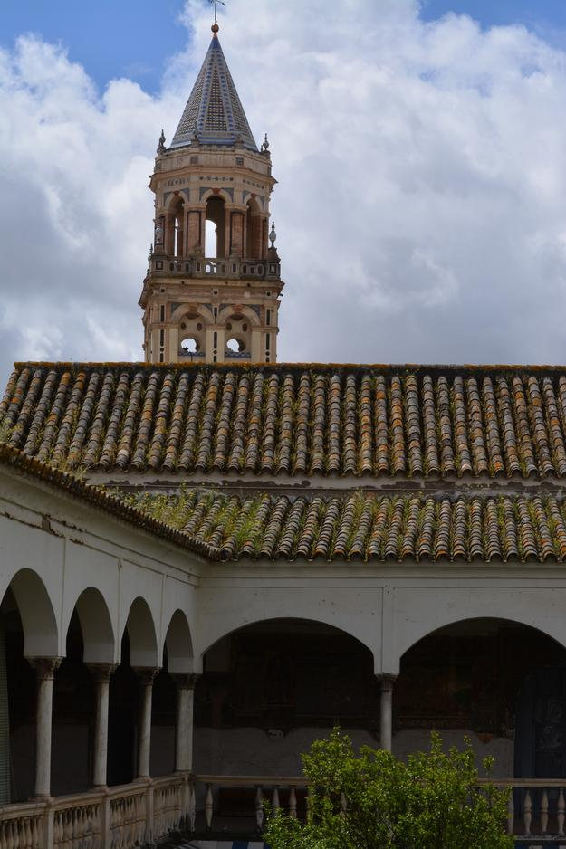 Exterior view of the cloister of the Convent of Santa Inés, showing roof tiles overrun with biological growth, 2016