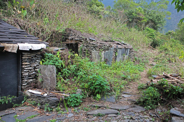 Uncontrolled vegetation threatens the ruins of Kucapungane's stone slab houses, which have been abandoned since 1974, 2015