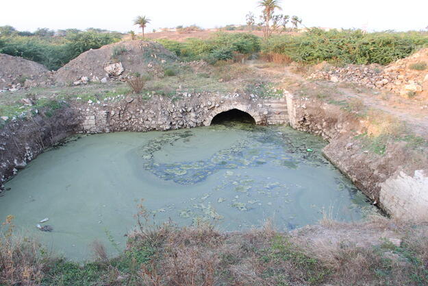 The Surang Baudi, part of the karez of BIjapur, after the accumulation of water. Photo credit: Joginder Singh.