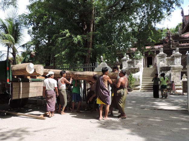 Delivery of teak logs for the veranda at Shwe-nandaw Kyaung, July 2016