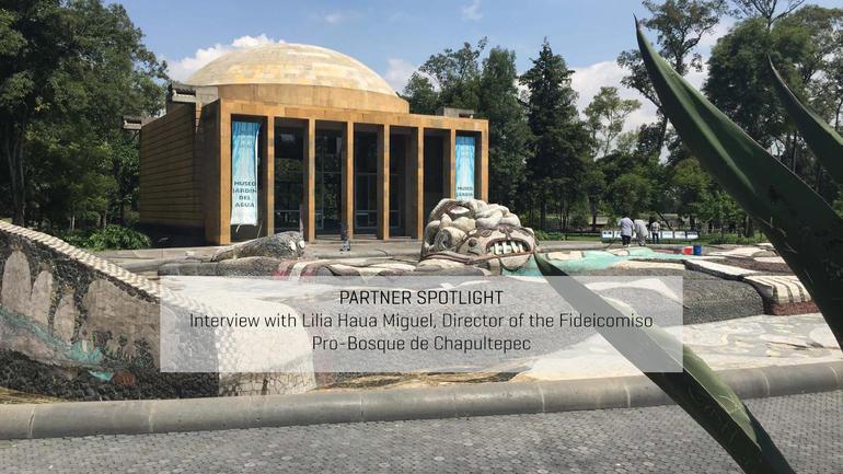 Partner Spotlight