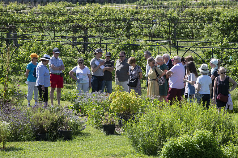 A group of Watch Day visitors at the Potager du Roi, 2019