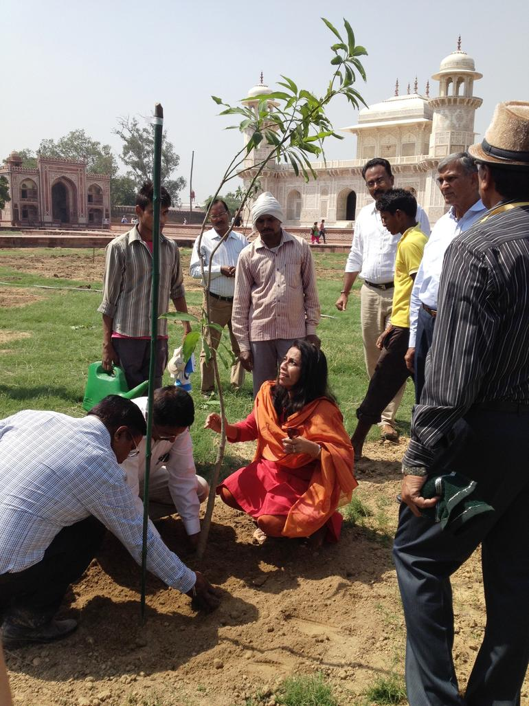Annabelle Lopez assesses a planting at the garden of I'timad-ud-Daulah in Agra, India.