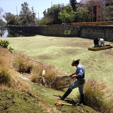 Cleanup of the canal, courtesy of Fundacion López de La Rosa.